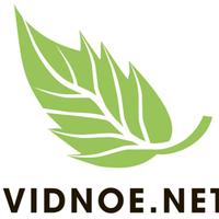 Логотип http://domo-lan.ru