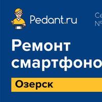 Логотип http://pedant-ozersk.ru