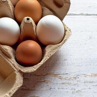 Логотип http://яйца-оптом.рф