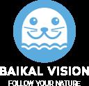 Логотип http://baikalvision.ru