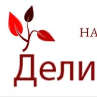Логотип http://delina-logistik.ru