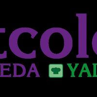 Логотип http://ntcolor.ru