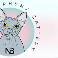 Логотип http://new-bal.ru