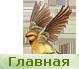 Логотип http://zookroha.ru