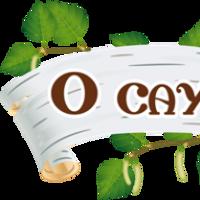 Логотип http://odincovo-sauna.ru