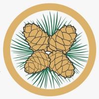 Логотип http://biokedr-cosmetics.ru