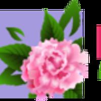 Логотип http://vesna-studio.ru